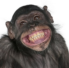 تصاویر قیافه دخترا وقتی http://funny-photo.blogfa.com/tag/%d9%82%db%8c%d8%a7%d9%81%d9%87-%d8%af%d8%ae%d8%aa%d8%b1%d8%a7-%d9%88%d9%82%d8%aa%db%8c